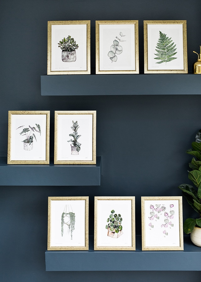 "<a href=""https://toastedcrumpet.co.uk/product-category/fine-art-print/10x12-mounted-fine-art-print/""><p> Shop Our New Botanical Prints </p></a>"