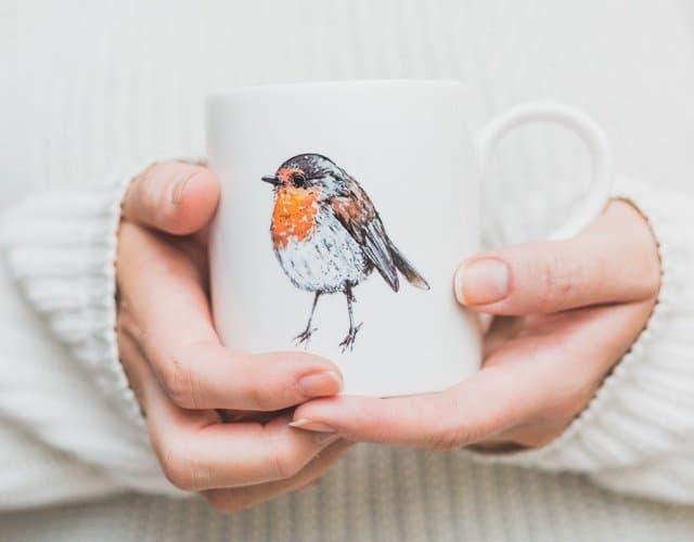 640 x 500 pixels robin mug