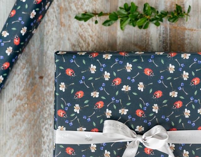640 x 500 gift wrap
